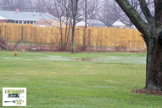 WMBest-Spot-In-Yard