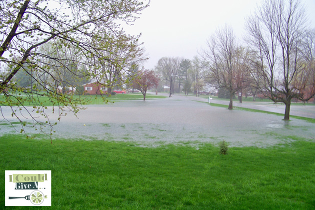 "This is how our side yard typically looked after heavy rain.  We called it ""Lake Miller."""